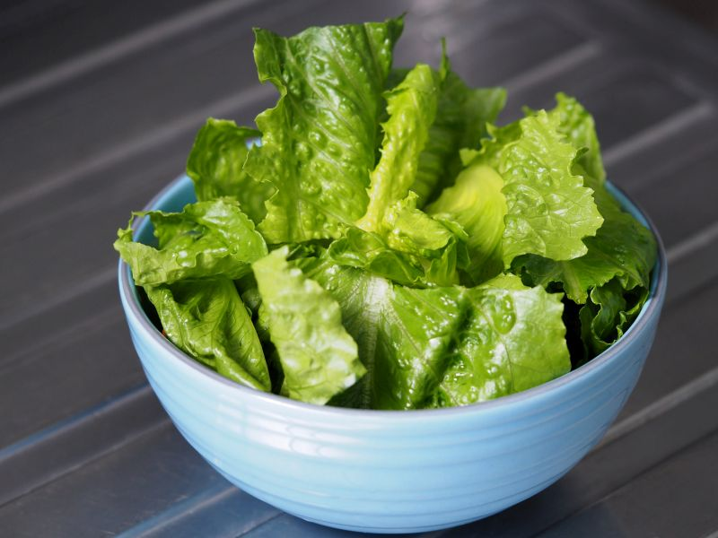 News Picture: Cases Rise in E. Coli Outbreak Tied to Romaine Lettuce
