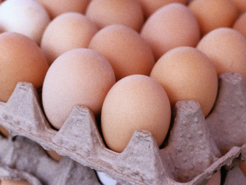 News Picture: Company Recalls More Than 200 Million Eggs Due to Salmonella Scare