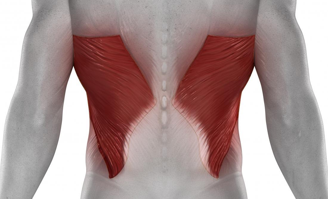 Latissimus dorsi pain in the back