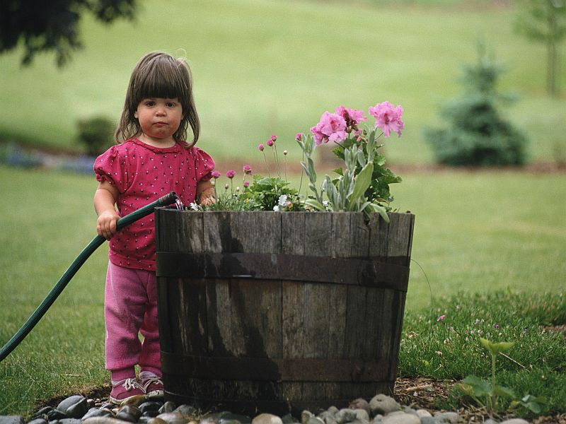 News Picture: Gardening Isn't Just for Adults