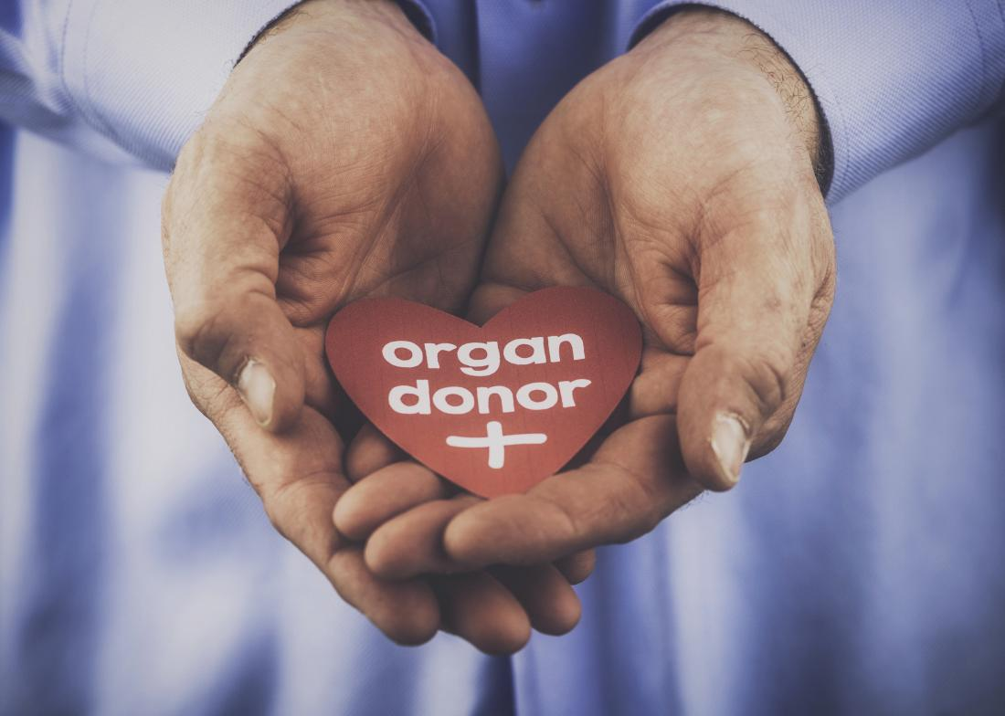 Liver transplant survival rates go up as more people agree to donate