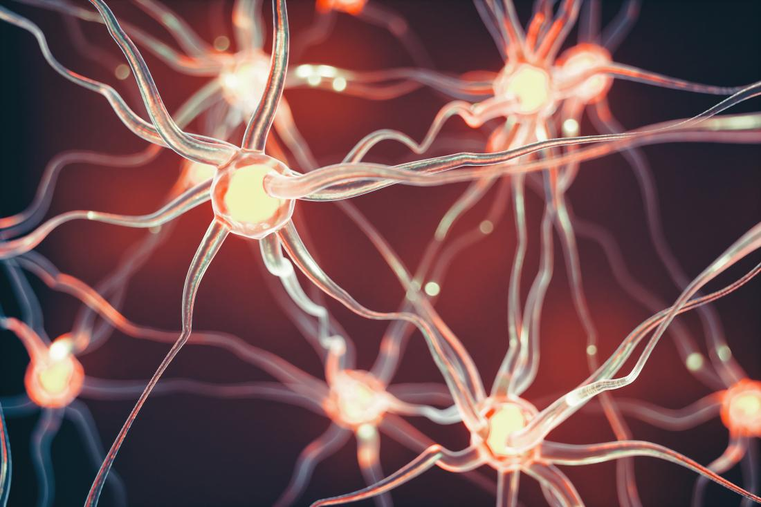 concept illustration of neurons