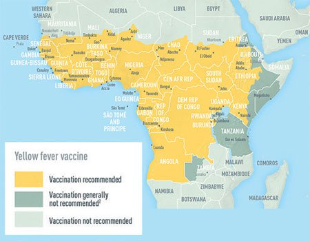 Picture of countries with risk of yellow fever virus transmission