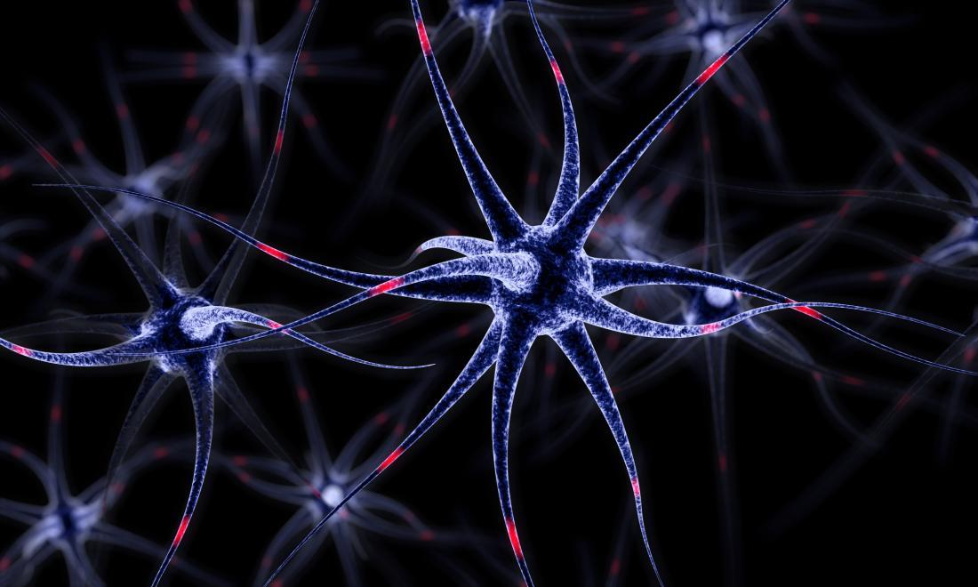 brain cells in blue