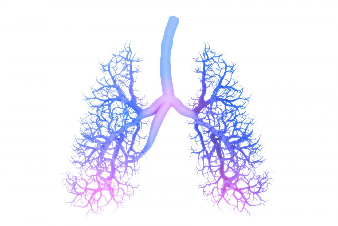 concept illustration of lungs