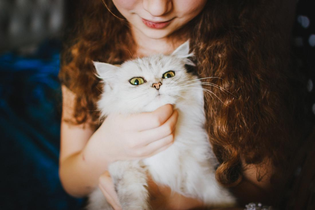 person cuddling white cat