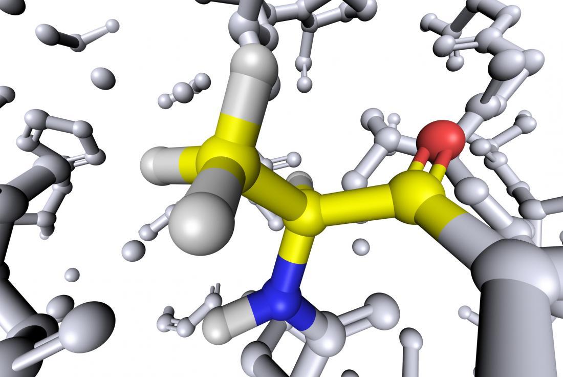 Alanine amino acid