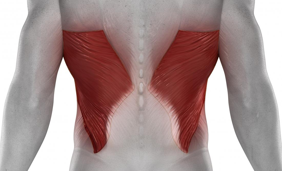 Latissimus dorsi pain in the back