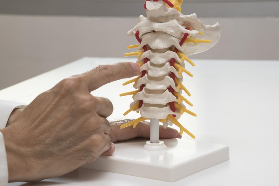pointing to spinal discs
