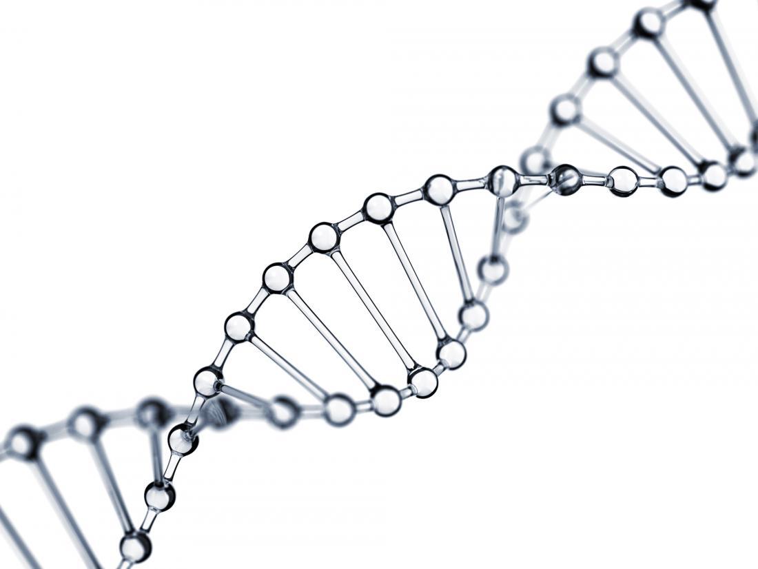 glassy DNA