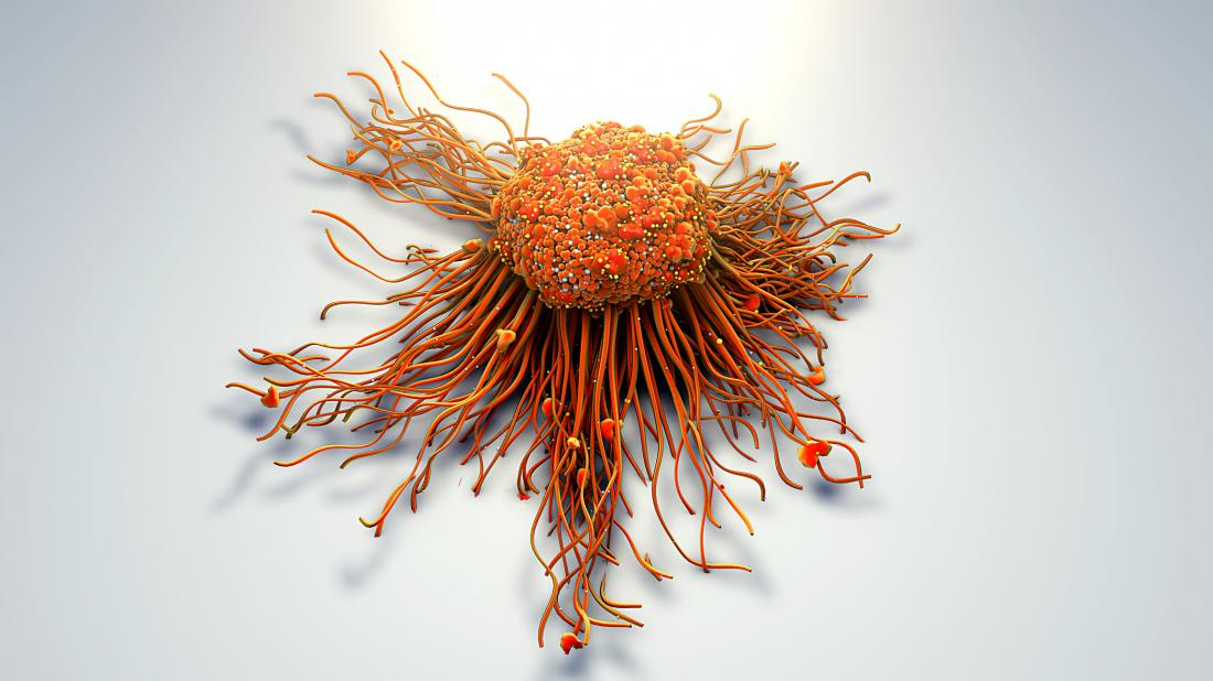 cancer cell<!--mce:protected %0A-->