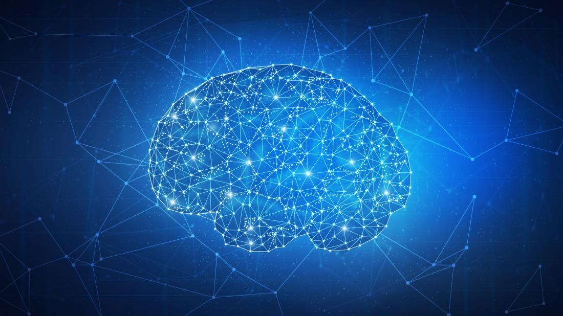 brain pathways illustration
