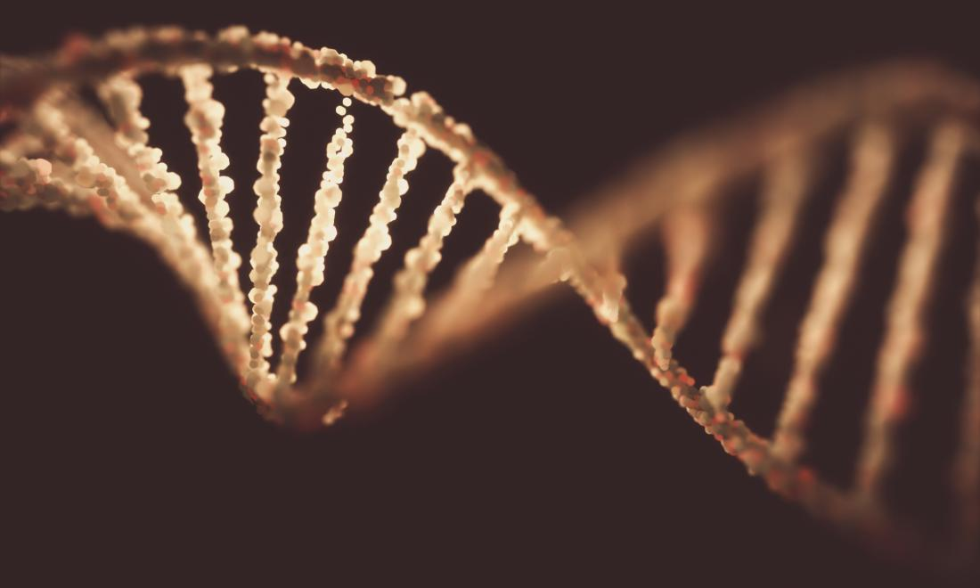 illustration of DNA structure
