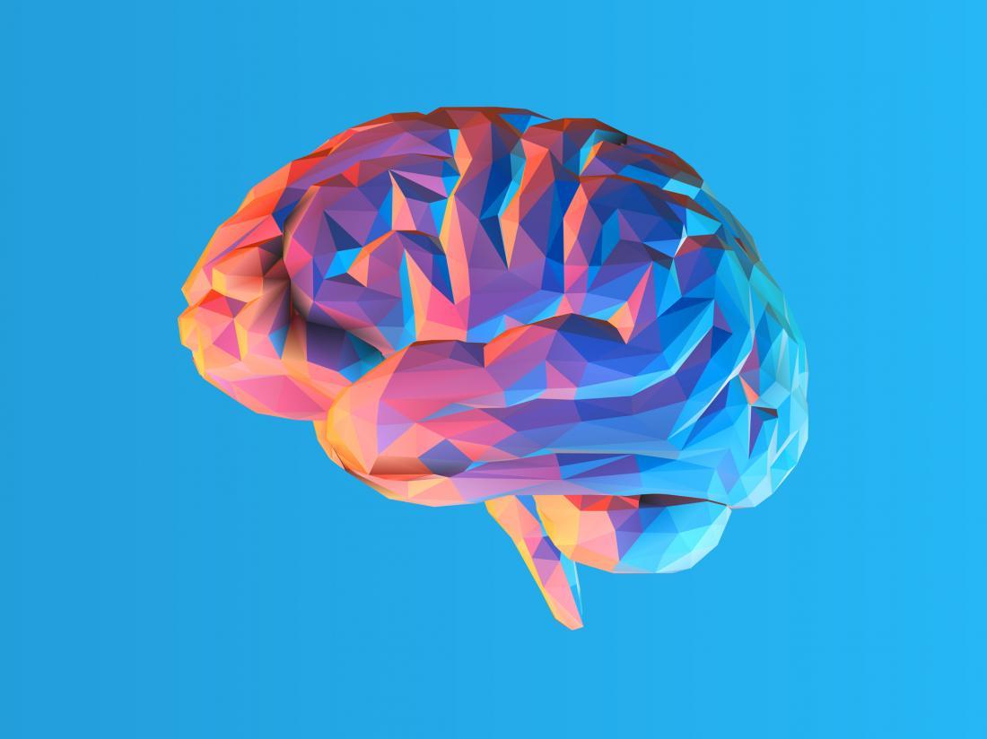 Geometric brain