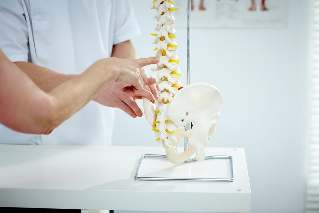 Chiropractor pointing at discs on model of spine