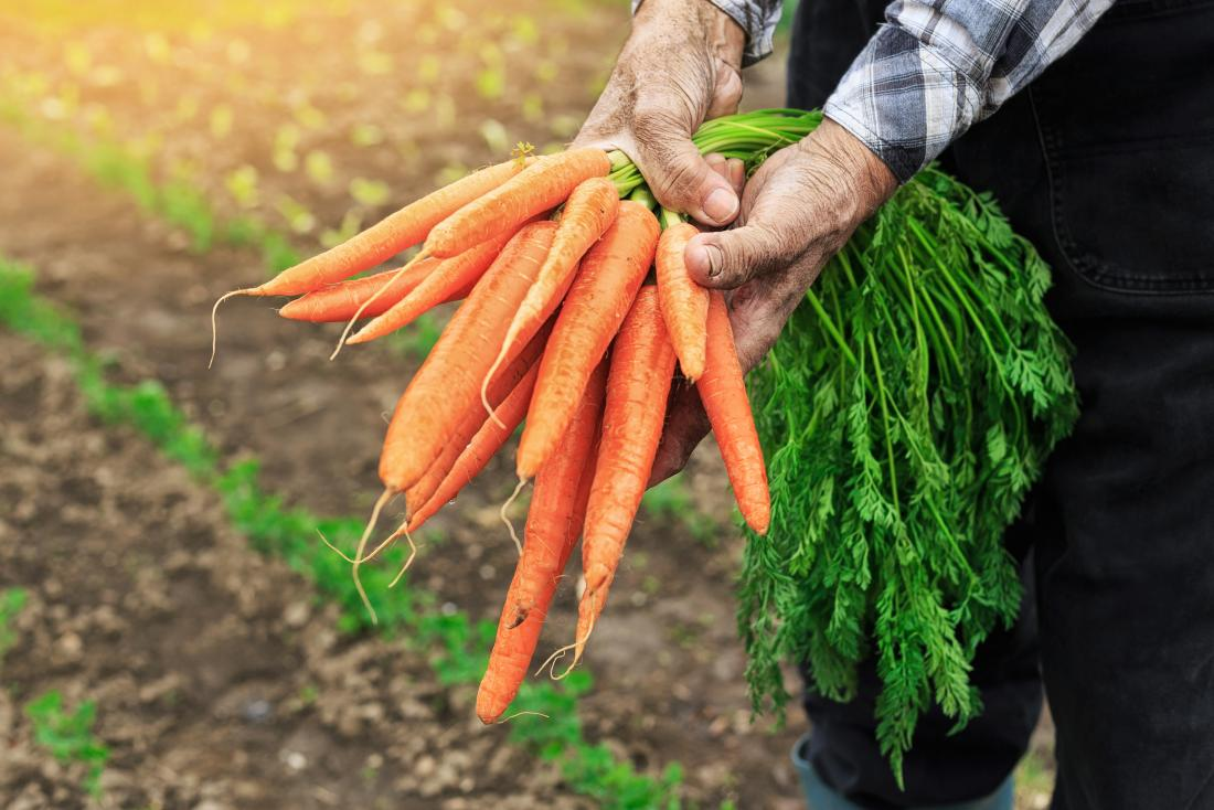 Cancer fighting foods carrots
