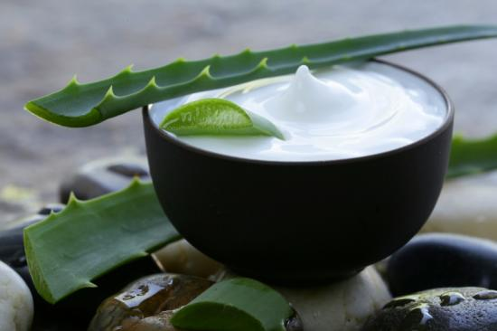 Aloe vera plant and cream in bowl.