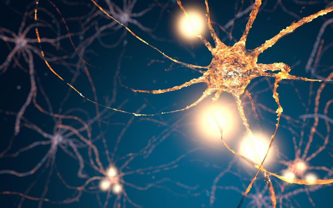 illustration of a neuron