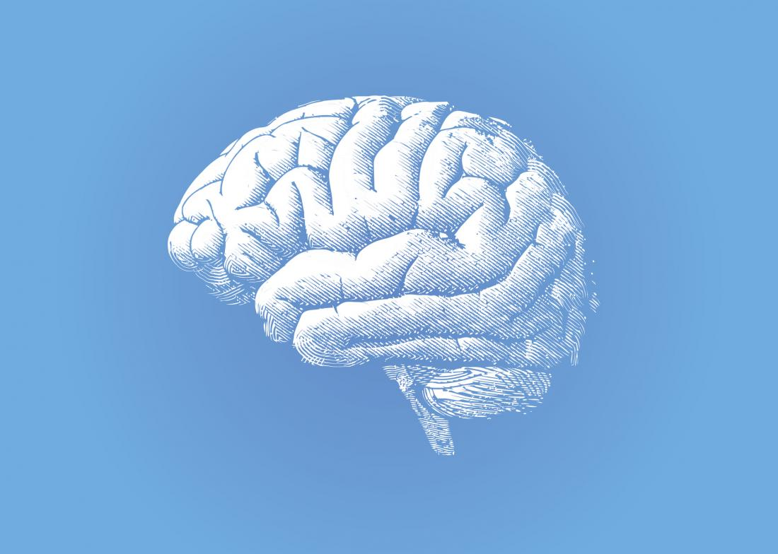 brain illustration, white on blue background