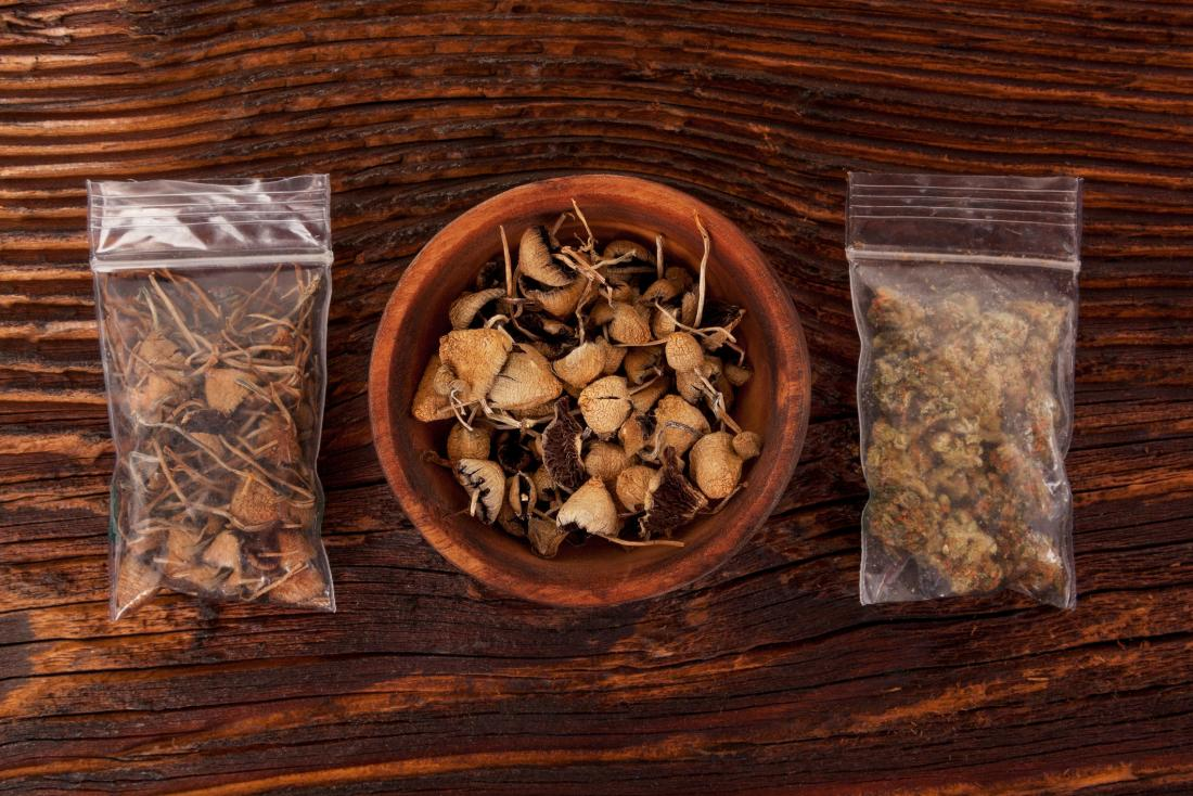 magic mushrooms on table in bags and in a bowl