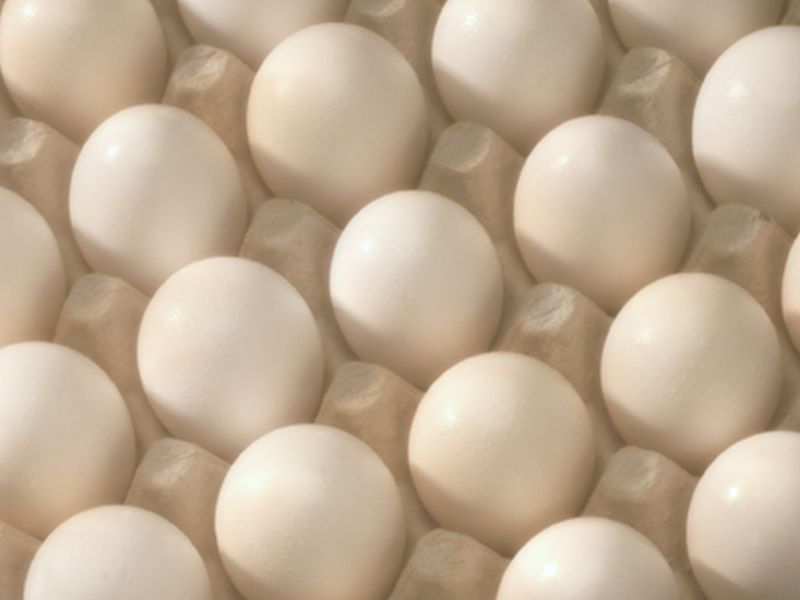 News Picture: Treatment May Allow Allergic Kids to Eat Eggs Safely: Study