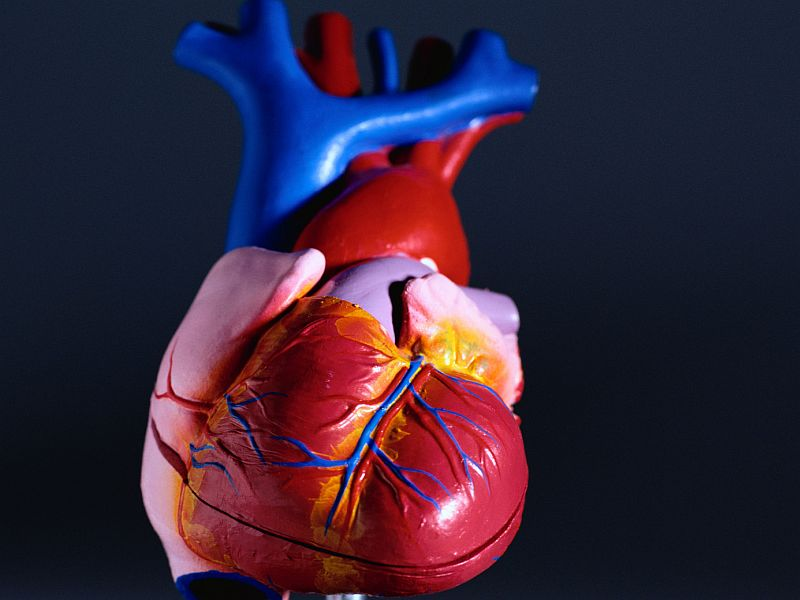 News Picture: The Earlier You Develop Type 2 Diabetes, the Greater Your Heart Risks
