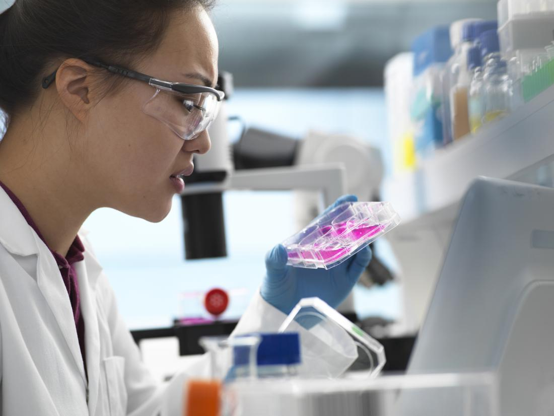 researcher studying samples in the laboratory