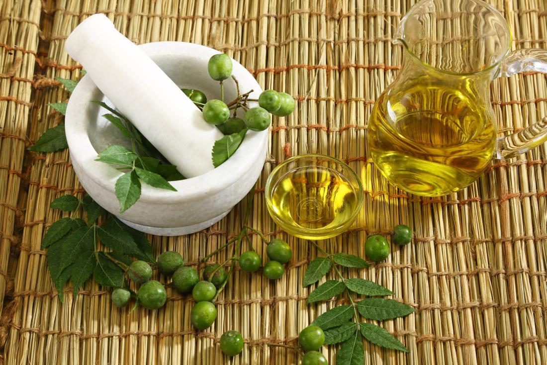 Neem plant and essential oil