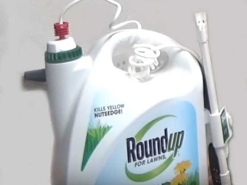 News Picture: Roundup Linked to Human Liver Damage: Study