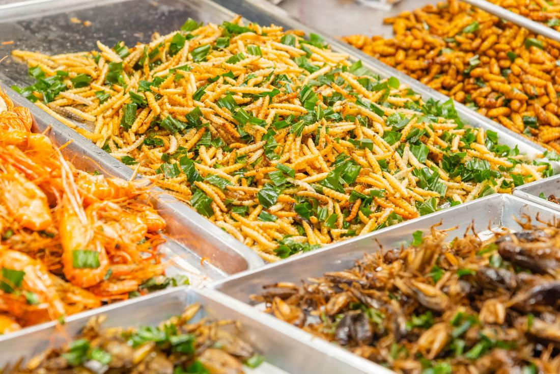cooked insects including maggots in market