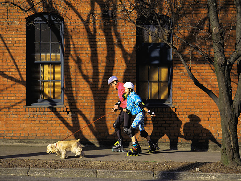 News Picture: Surprising Ways Owning a Dog Is Good for Your Health