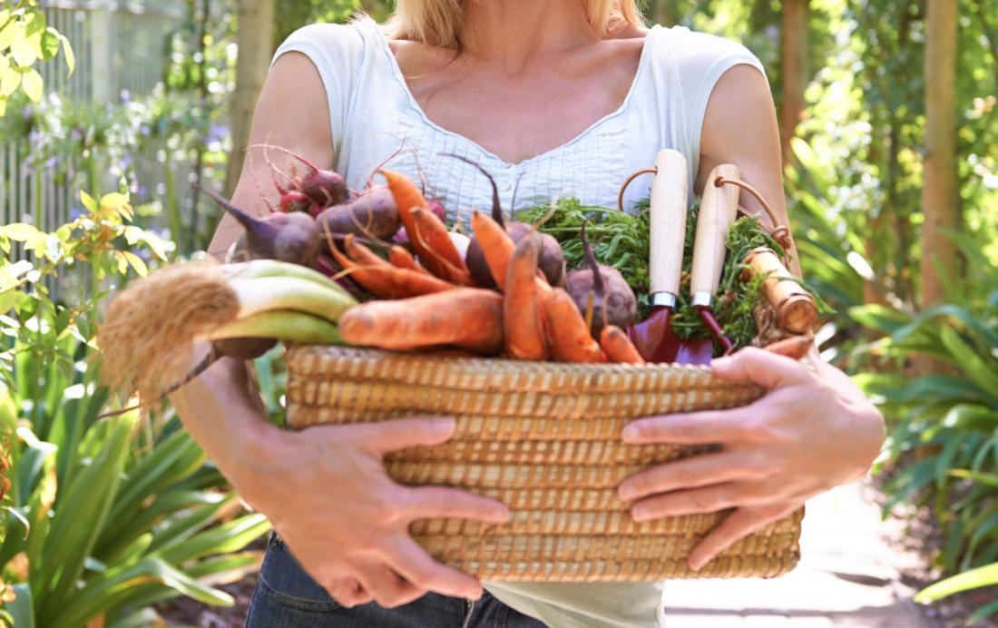 Woman carrying basket full of veg