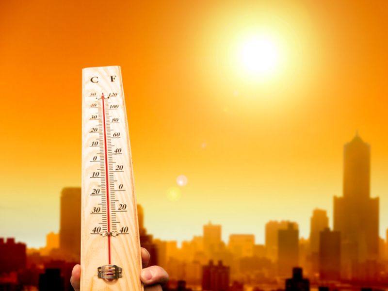 News Picture: As Heat Bakes the Nation, Expert Offers Tips to Stay Safe