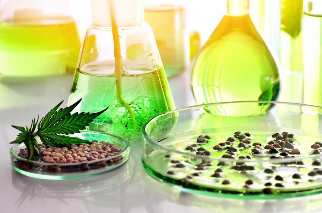 cannabis paraphernalia in lab