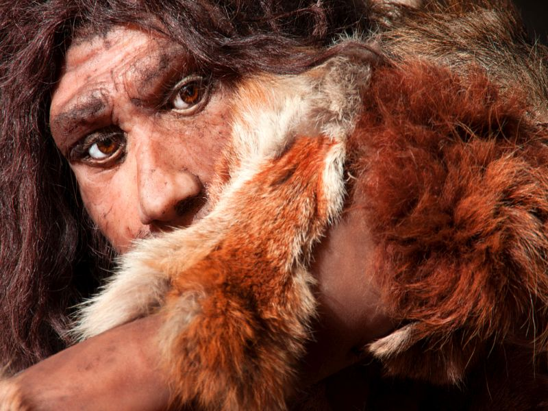 News Picture: Extinct Human Species Passed on Powerful Immune System Gene