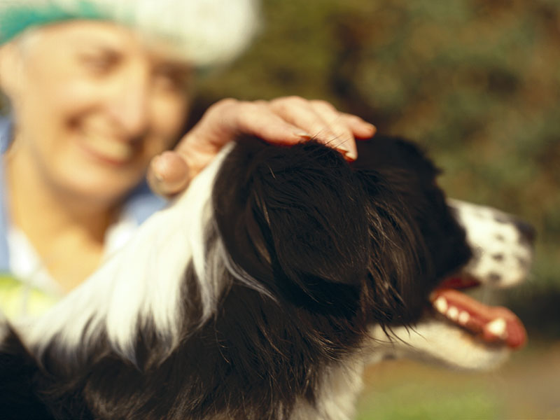 News Picture: Your Furry Best Friend Might Extend Your Life