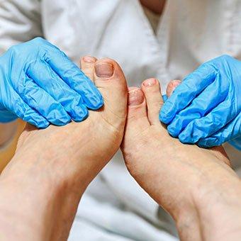 Toenails can regrow normally following ingrown toenail surgery.