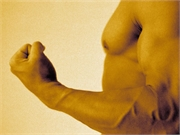 News Picture: Muscle in Middle Age Might Help Men's Hearts Later