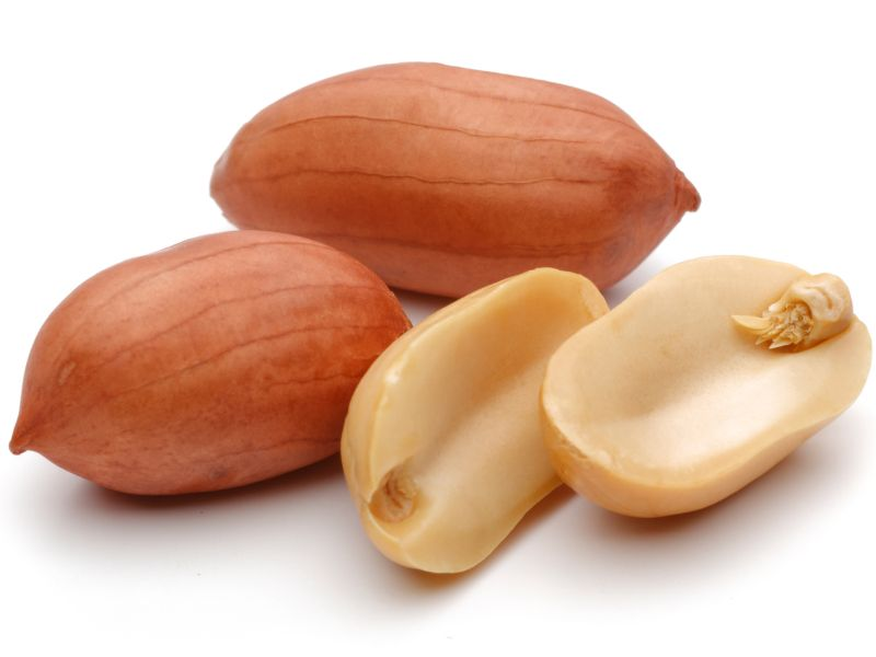 News Picture: First Drug Approved for Treatment of Peanut Allergy in Children