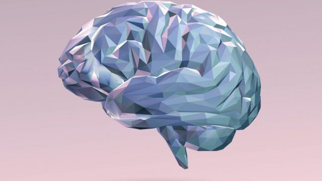New brain circuit that controls anxiety found
