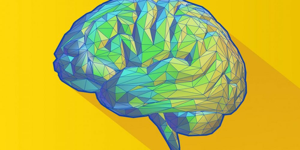 Cocaine addiction: Could targeting this brain circuit prevent relapse?