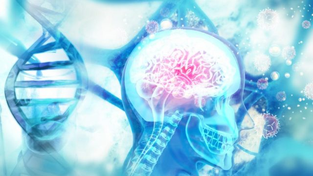 Dementia: Gene study boosts search for treatment