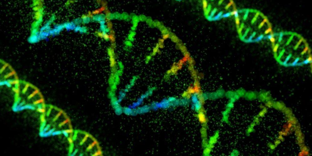 Depression: Gene-activating drug reverses symptoms in mice