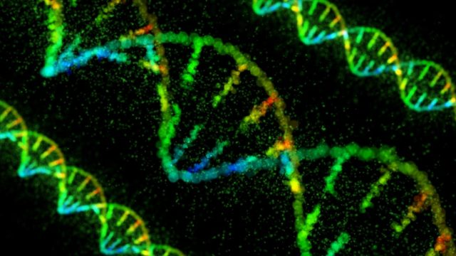 Depression: Gene-activating drug reverses symptoms in mice
