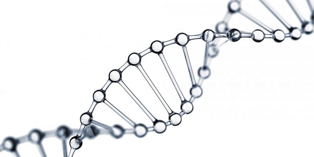 'Junk DNA' has role in cancer spread, say scientists