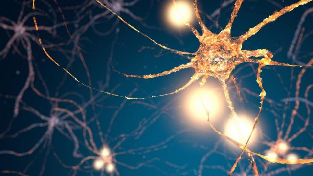 Simple drug formula regenerates brain cells