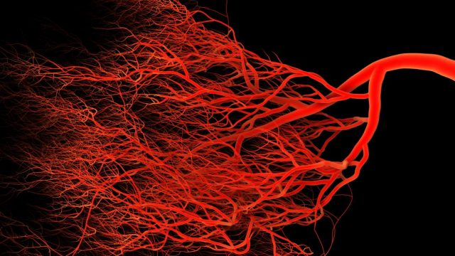 Leaky blood vessels may trigger Alzheimer's
