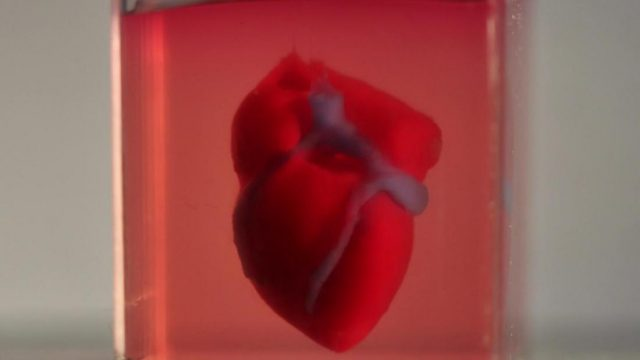 Scientists 'print' 3D heart using patient's tissue