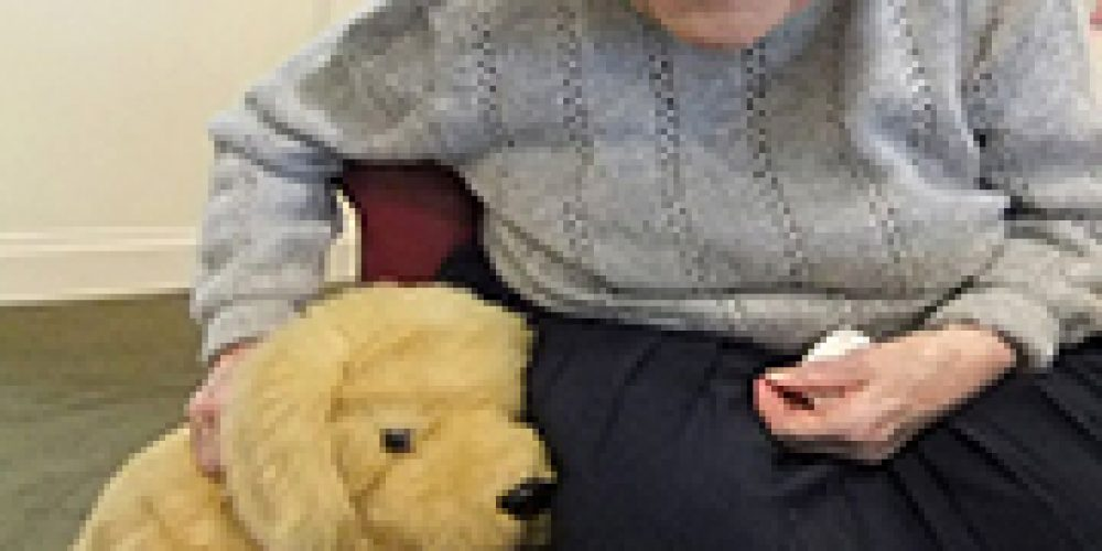 'Robopets' Bring Companionship, Calm to Nursing Home Residents