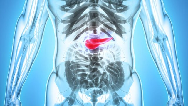 How is the pancreas involved in diabetes?